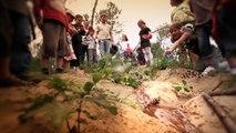 Education à l'environnement Parc Naturel des Landes de Gascogne