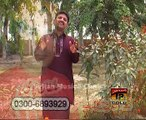 Mil Ka Na Turiya dhola Arman By Javed Urf Jedi Dhola Vol 3 Sp Gold 2015