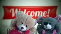 Hello Hello Puppet Rhyme |  Cartoon Teddy Bear Puppet Show For Children