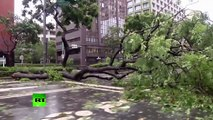 Strongest cyclone of 2015? Deaths and evacuations as Typhoon Soudelor hits Taiwan