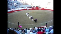 BULL FAILS COMPILATIONS - BULL VS MATADOR WIN TOP 5 - Matador gets owned. Getting what they deserve