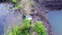 Fishing Pond X2 Update - Pond Creatures Thrive Despite the Leaks!