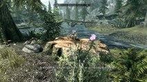 Skyrim Enhanced With Graphics Mods - Ultra settings
