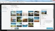 Smart Grid Gallery - Responsive WordPress Grid Gallery Plugin