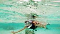 Snorkeling in Moorea with black tip reef sharks - GoPro Hero4  December 2014