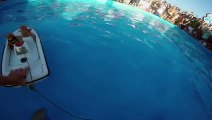 GoPro  Twiggy the Waterskiing Squirrel