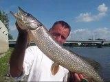 Le Pêcheur Urbain: Sortie de pêche au vieux pont de Terrebonne