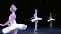 Tchaikovsky: Swan Lake - The Royal Ballet - Digital Theatre Collections