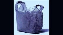 Do you ever feel like a plastic bag like a plastic bag like a plastic bag