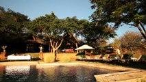 Robin Pope Safaris   Stanley Safari Lodge   Safari Zambia   Livingstone