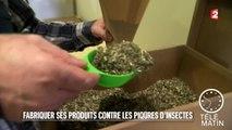 Santé - Fabriquer ses produits contre les piqûres d'insectes - 2015/08/12
