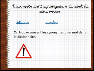 synonymes homonymes contraires