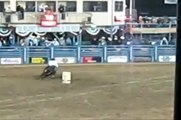 Barrel Racing and Pole Bending! Do you have what it takes!?!?!?