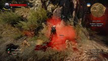 The Witcher 3 Пасхалка на Monty Python and the Holy Grail.