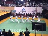 Taekwondo performance(world taekwondo hanmadang)
