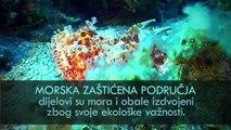Kako očuvati Jadran - Hrvatski morski parkovi