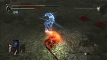 Demon's Souls:  demon's souls PvP