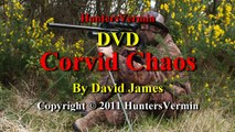 Air Rifle Hunting DVD, Corvid Chaos by HuntersVermin 2011