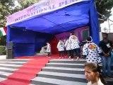Soran bushi (Japanese traditional dance) @ Delhi University Festival (Antardhvani) on 21st Feb, 2015