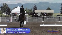 336D Madison Packard on Abslewtly Grandeur JR Training Dressage The Event at Rebecca Farm July 2015