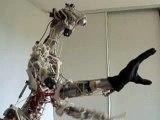 Cronos robot: different angles