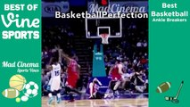 Best Basketball Crossovers & Ankle Breakers VINES Compilation | Best NBA Crossovers