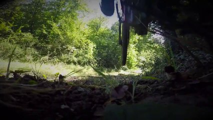 Sortie XC VTT Forêt de Fenioux (17) - Specialized Pitch 650b