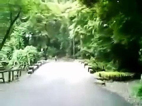 吉祥寺・朝の井の頭公園(その1)