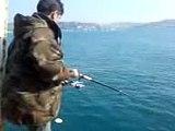 Balık avı,istavrit akını,lüfer,kofana,fish,deniz.acemi balık