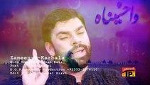 Zameen E Karbala Pe Dil Tarapta - Shadman Raza - Official Video