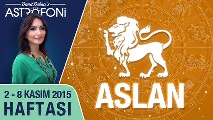 ASLAN haftalık yorumu 2-8 Kasım 2015