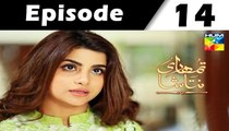 Tumhari Natasha Episode 14 Full on Hum Tv