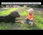 Labradors Are Awesome Part Compilation - Funny Animal | funny dog videos | funny dog vines, dog 23