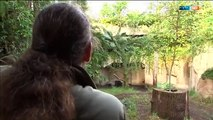 Frohe Botschaften aus dem Zoo | Elefant, Tiger & Co. (598) | MDR