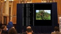 "Big Data Week - Data Visualization London -  Paul Gesiak ""Data Visualisation"""