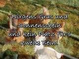 Trauriges Gedicht // Aufschrei der Tränenlosen // TIERSCHUTZ // Tiere klagen an