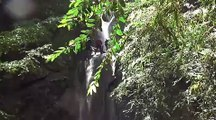 canyoning - exercice pompiers