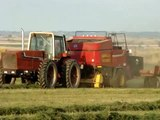 IH 3388 2+2 Baling Hay with a new holland BB960
