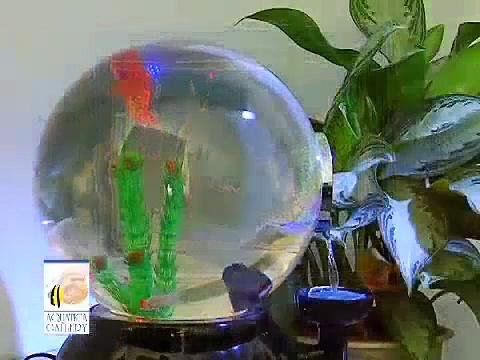 Aquatica Gallery Magic Globe Aquarium – Spanish