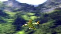 Hawker Hunter Fighter Jet Flight Switzerland