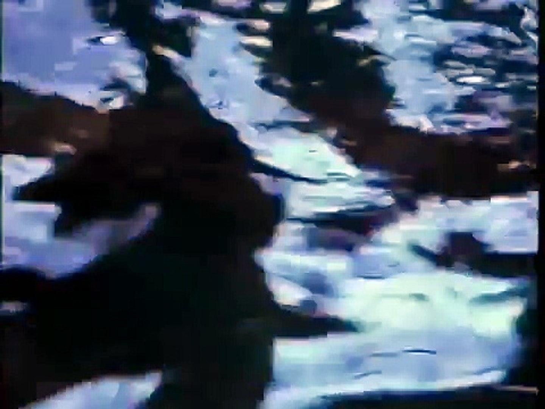 Octopus 2: River of Fear Trailer
