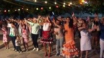 EL CABALLO CAMINA PA´ LANTE HD (FIESTAS DE GALERA GRANADA 2014)