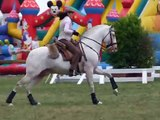 Equestria 2012 - Concours d'équitation de travail - Isabelle Martinez sur Petardo