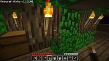Lets Play Minecraft Episode 9 : Torches Torches Everywhere!