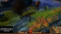 Guild Wars 2: Iron Marches Vista #8 Gladefall Run