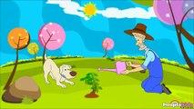 Bingo Dog Song - Bingo, O Cachorro