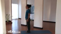 ashtanga yoga poses sun salutation b  video dailymotion