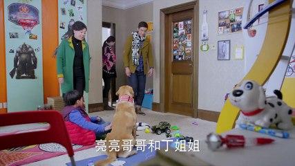 神犬小七 第19集 Hero Dog Ep19