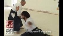 Martial Arts Self-Defense versus Bigger Attacker - Shobu Aikido of Boston