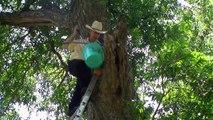 The Skunk Whisperer, Inc. Oklahoma Wildlife Control & Natural Pest Control Wildlife Removal Tulsa